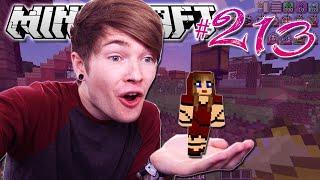 Minecraft | TINY LITTLE VILLAGERS!! | Diamond Dimensions Modded Survival #213