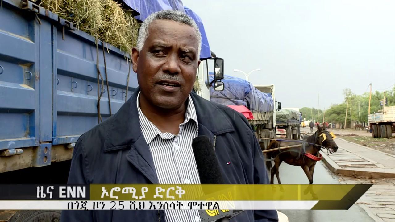 Ethiopia: Sheikh Al Amoudi Donates over 25 million Birr for drought victims in Oromia