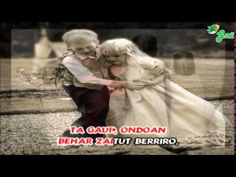 Behar zaitut (Hesian)
