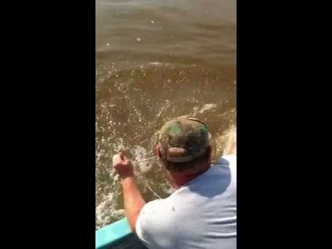 Spoonbill fishing or paddlefish Oklahoma