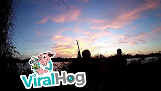Duck Hunting Win || ViralHog