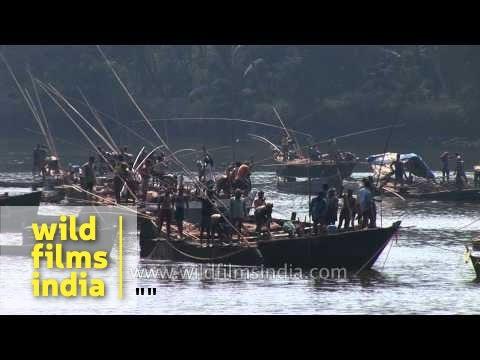 Sand dredging in the Mandovi River, Goa