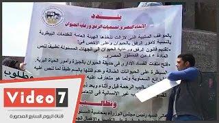 """بالفيديو..وقفة بـ""""ميدان الأوبرا """" للمطالبة بإصدار تشريعات لمنع العنف ضد الحيوان"""