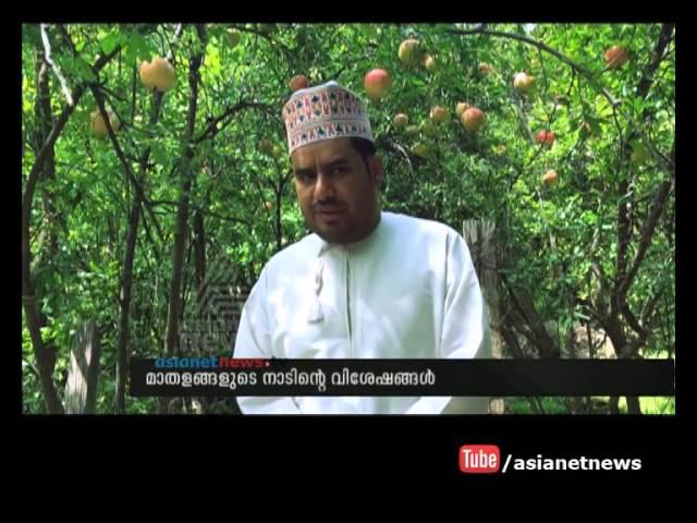 Pomegranate land  Wadi Bani Habib : Asianet Gulf News