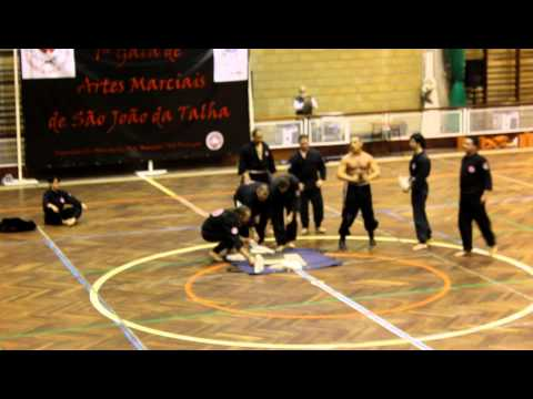 1 Gala de Artes Marciais de So Joo da Talha - Kung Fu TOA Portugal (3 parte)