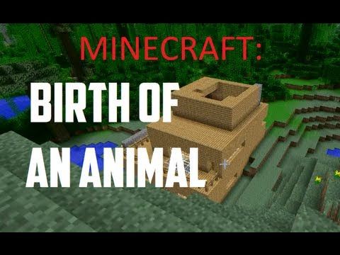 Minecraft : Birth Of An Animal With Lt. Weenie video