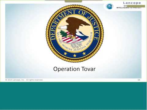 Reverse Engineering Malware: A look inside Operation Tovar