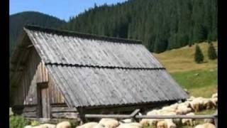 Bożena Mielnik -  Mały domek