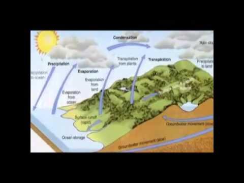 media media pembelajaran geografi sma tentang lingkungan hidup