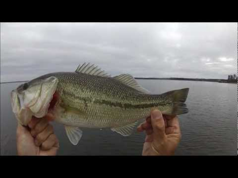 Prespawn Bass Fishing Toledo Bend Feb 7 2012