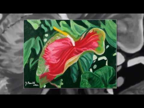Kwiaty Świata - Malarstwo Józefy Ziuty Pawlik