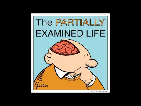Partially Examined Life podcast - Wittgenstein - Tractatus - Part 1