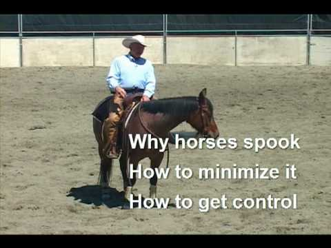 Training Horses that Spook, pt.1