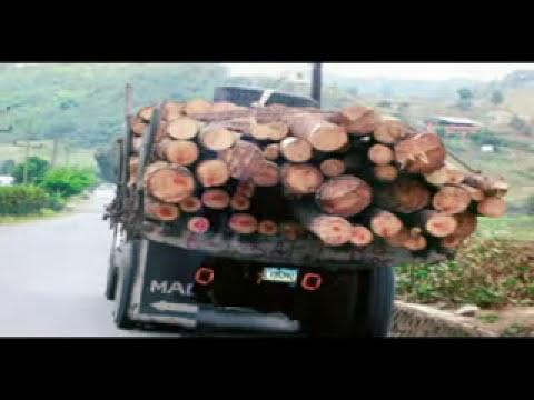 Recursos naturales, biodiversidad y medio ambiente.wmv