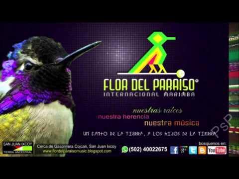 Marimba Flor del Paraíso vol.8 Llora mi Alma
