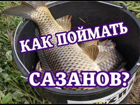 рыбалка перевод на татарский