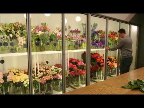 Цветочные витрины из алюминиевого профиля для хранения и демонстрации цветов