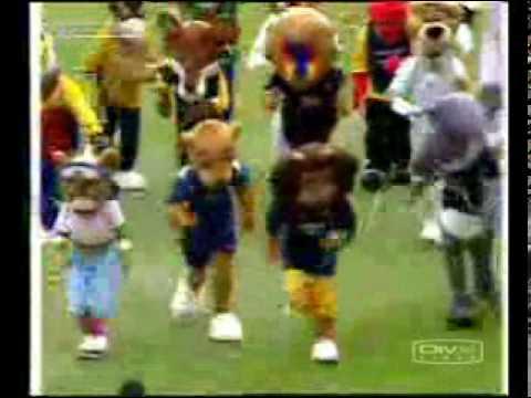 Funny Cricket video