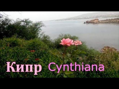 КИПР/ Cynthiana окружающая красота, ужин