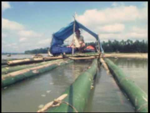Bamboo raft Malaysia 1985.wmv (from globe trotter)