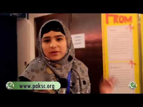 Science Fair Project Generation Of Electricity