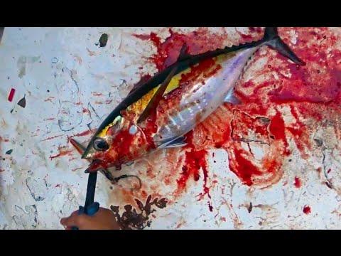 Vertical Jigging offshore fishing BLOODY TUNAS and KINGFISH Dania