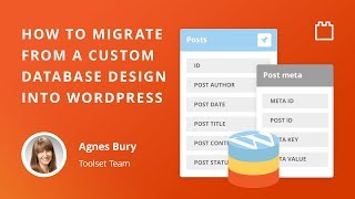 How to migrate from a custom database into WordPress