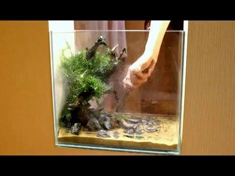аквариум 240 л aquarium HD акваскейп arkwars.ru