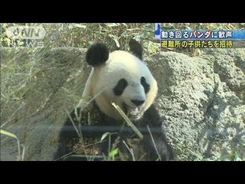 【地震】被災者を上野動物園に招待 パンダに歓声(11/04/05)