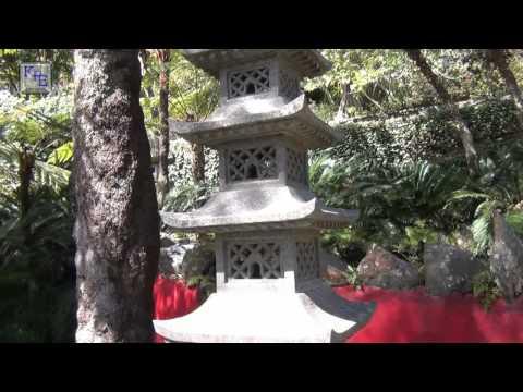 Madeira - Im Tropischen Garten Bei Funchal