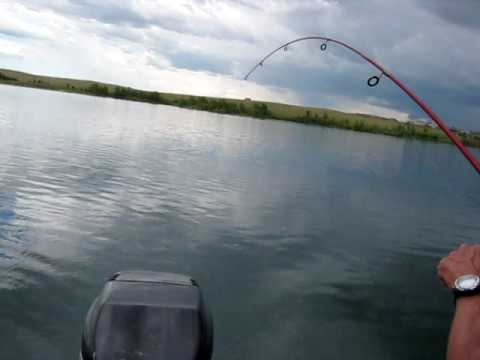 Aurora Reservoir Colorado Fishing with Charlie / PBS  7-21-10