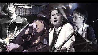 ?? ?ASH?(Music Video / Live Edition)-YouTube ver.-
