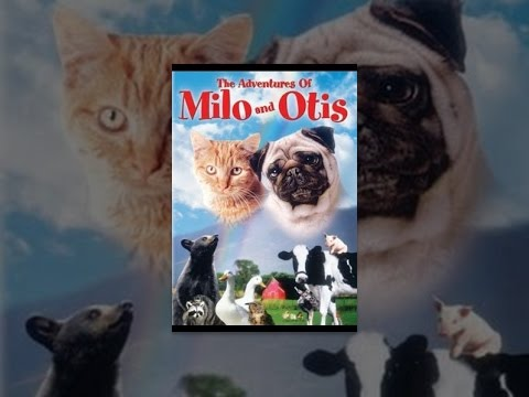 The Adventures of Milo and Oti... is listed (or ranked) 5 on the list The Best Live Action Animal Movies for Kids