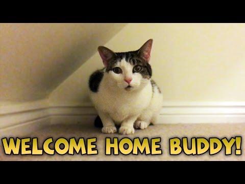 Welcome Home Buddy!