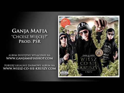 12. Ganja Mafia - Chcesz Więcej? (prod. Psr) video