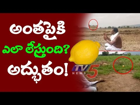 Lemon Black Magic at Yerravaripalem in Tirupati | Amazing magic Trick with Lemon  | TV5 Special