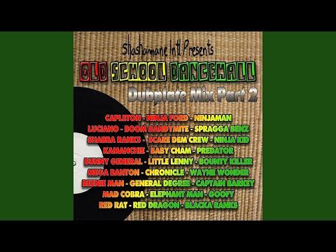 Jump Skin Out (Shashamane Dubplate) thumbnail