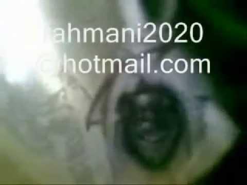 الشيخ الروحاني القادري حبس الجن في الزجاجة 004553807474