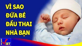 Dù có con hay không cũng phải biết VÌ SAO Đứa Bé Đầu Thai Nhà Bạn - Góc Nhìn Việt
