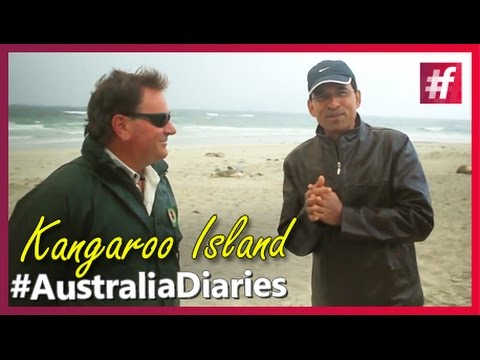#AustraliaDiaries with Harsha Bhogle - Seal Bay and Barbie Lunch at Kangaroo Island