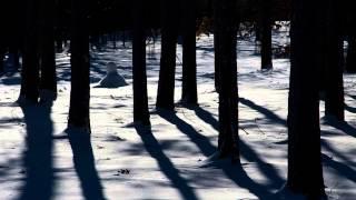 Watch Genesis Snowbound video