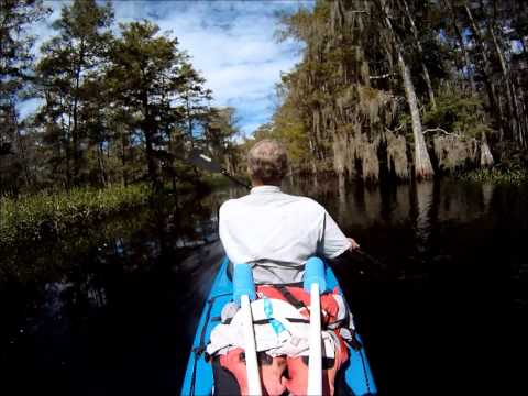 Fish Eating Creek in 18 mins. Fast Forward/Time Lapse Paddling - 8x normal speed HD GoPro Hero