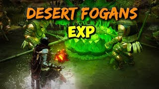 "Are Desert Fogans the ""NEW"" Pirates ?"