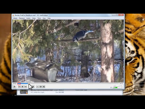 Watch ANY Video With VLC Media Player [Tutorial]