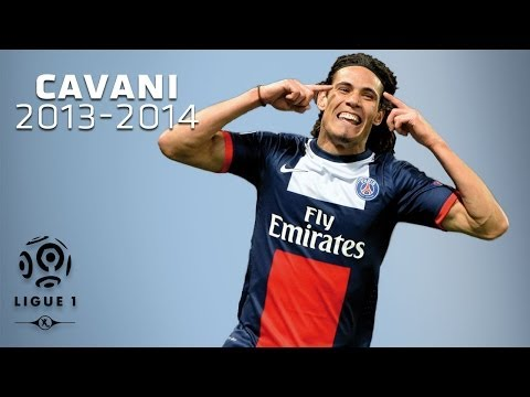 Edinson Cavani - All Goals in 2013-2014 (1st half) - PSG