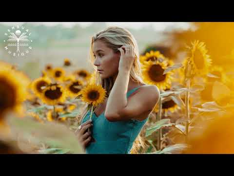 Zoopreme - Homeless Heart (feat. Pi & Erkki R)