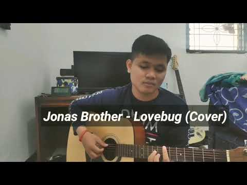 Download YANKEE BROTHERS - LOVEBUG JONAS BROTHER COVER Mp4 baru