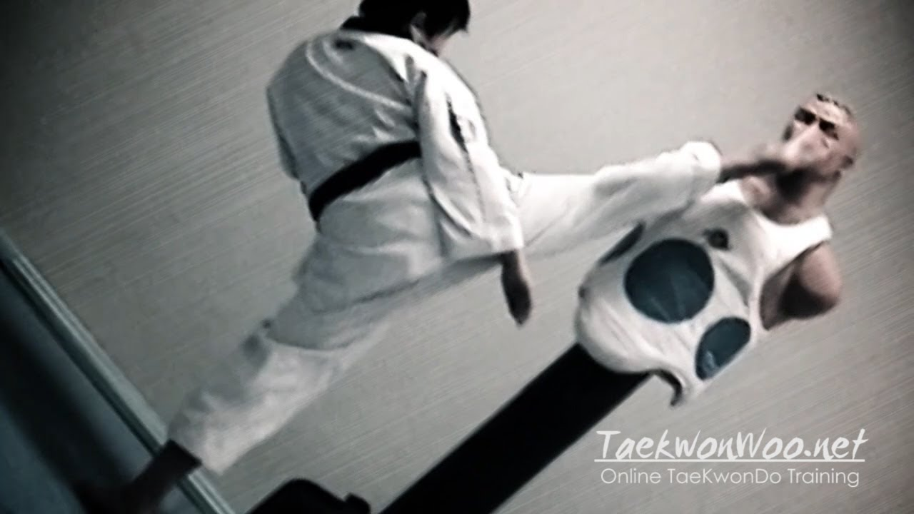 Kick Techniques Taekwondo Kicking Techniques Sampler