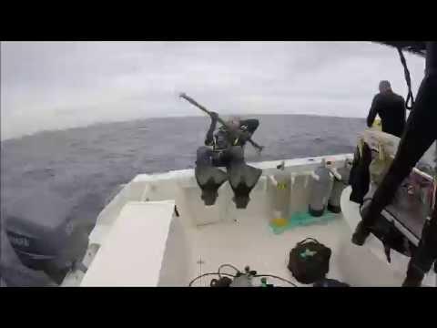 Diving Hopper Barge in Destin, Florida
