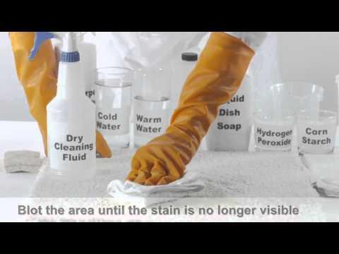 cleaning up cat urine on hardwood floors